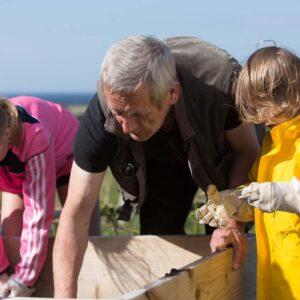 Wild Strands School Work William Mcelhinney